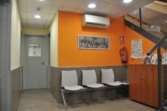 Sala de espera inferior felina