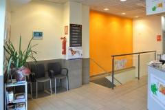 Sala de espera superior canina
